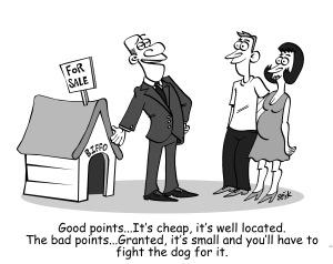 Estate Agent Cartoon